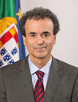 Fernando Manuel Ferreira Araújo