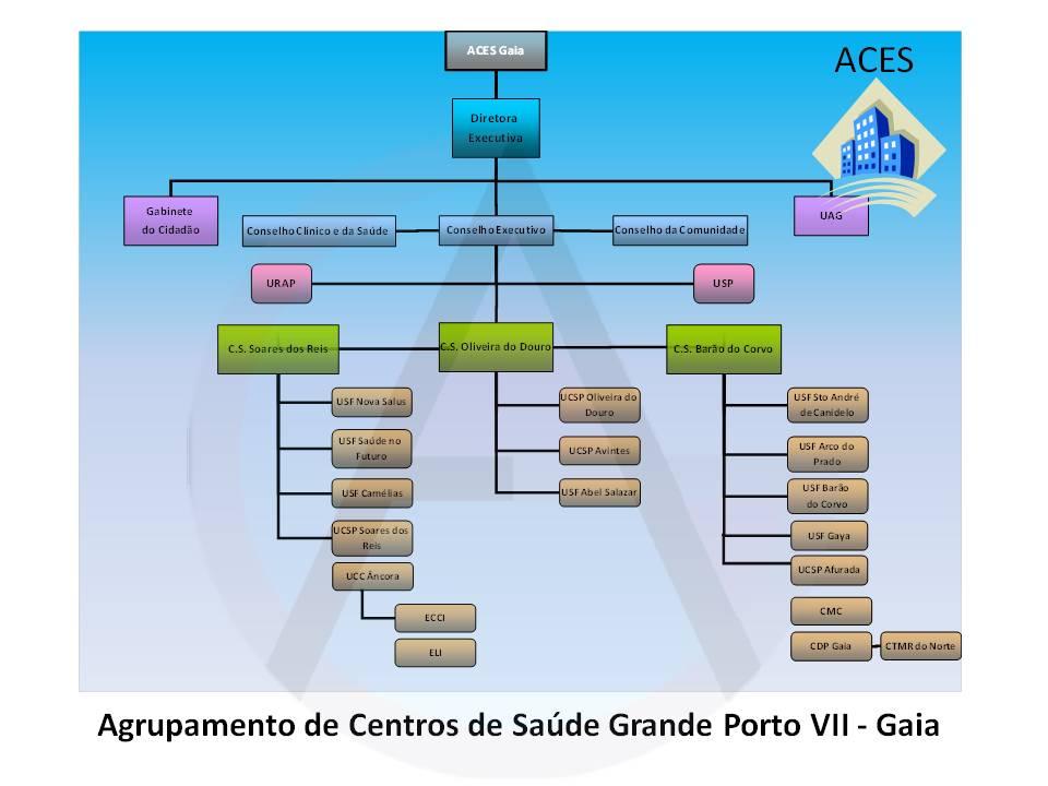 Organograma ACES Gaia
