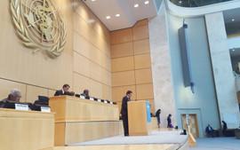 70.ª Assembleia Mundial da Saúde